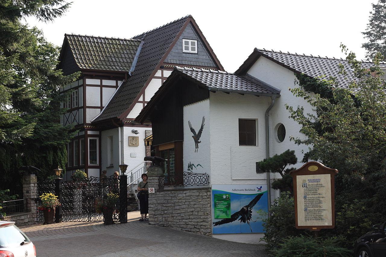 Bild Adlerwarte Berlebeck Detmold