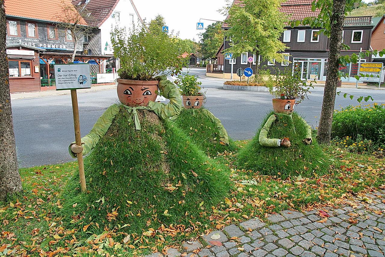 Bild KräuterPark Altenau