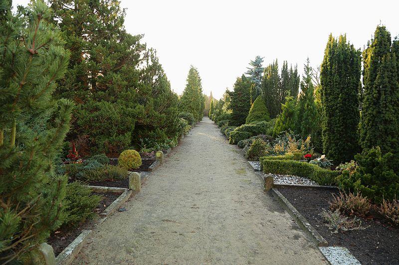 Bild Friedhof Lotte Wersen