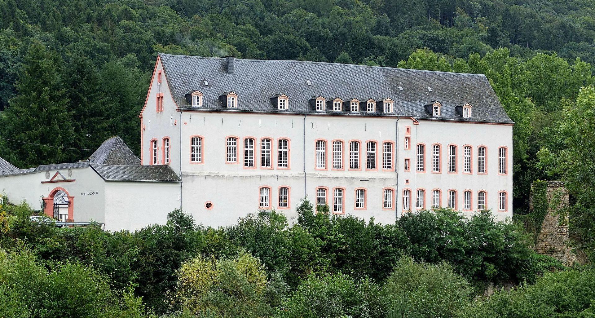 Bild Burg Bollendorf