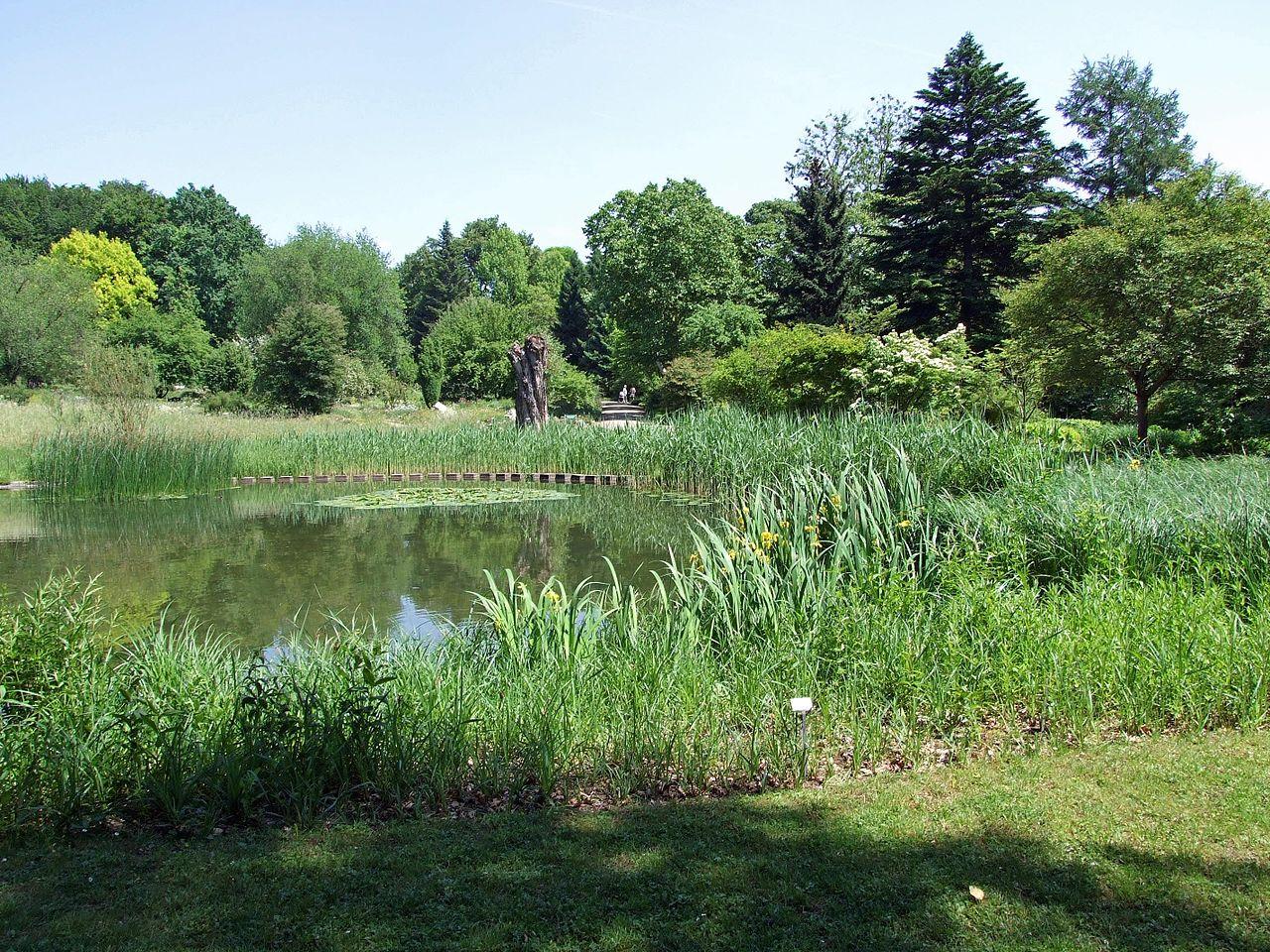 Bild Botanischer Garten Frankfurt am Main