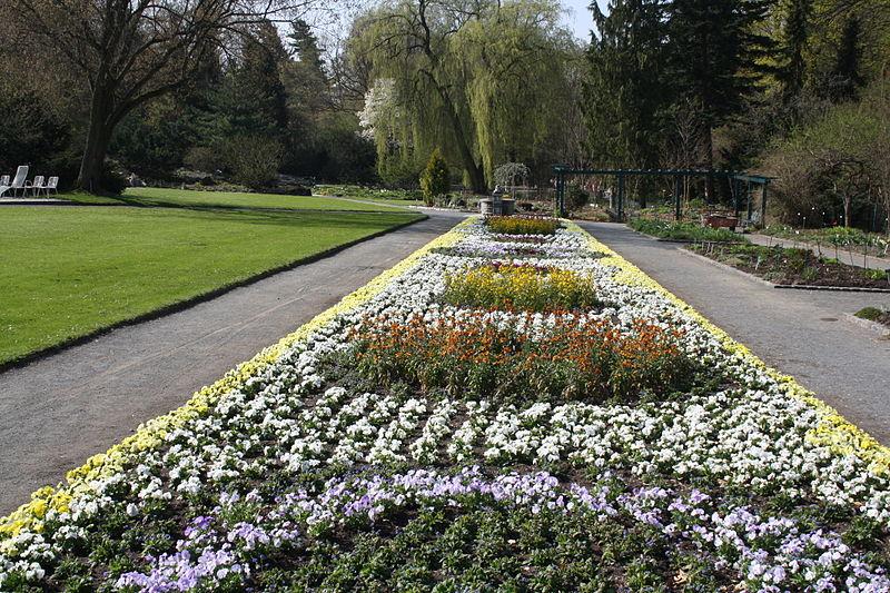 Bild Botanischer Garten Hof