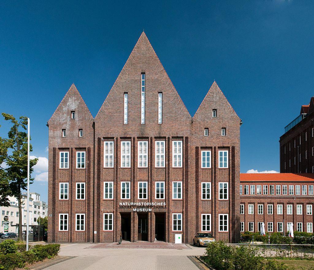 Bild Naturhistorisches Museum Braunschweig