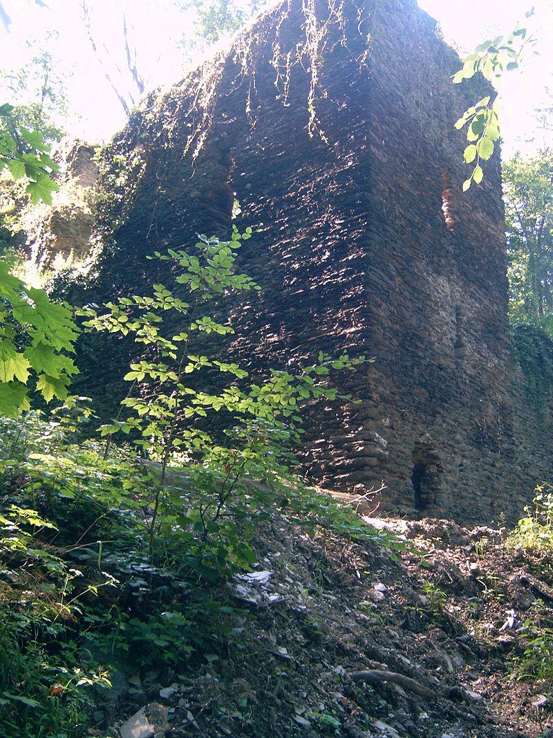 Bild Steinsche Burg Nassau