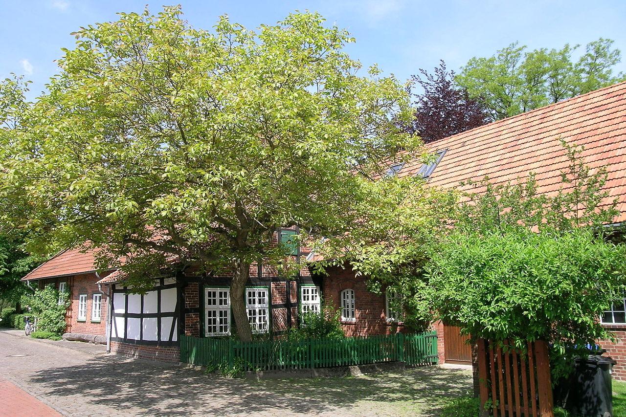 Bild Wilhelm Busch Geburtshaus Wiedensahl