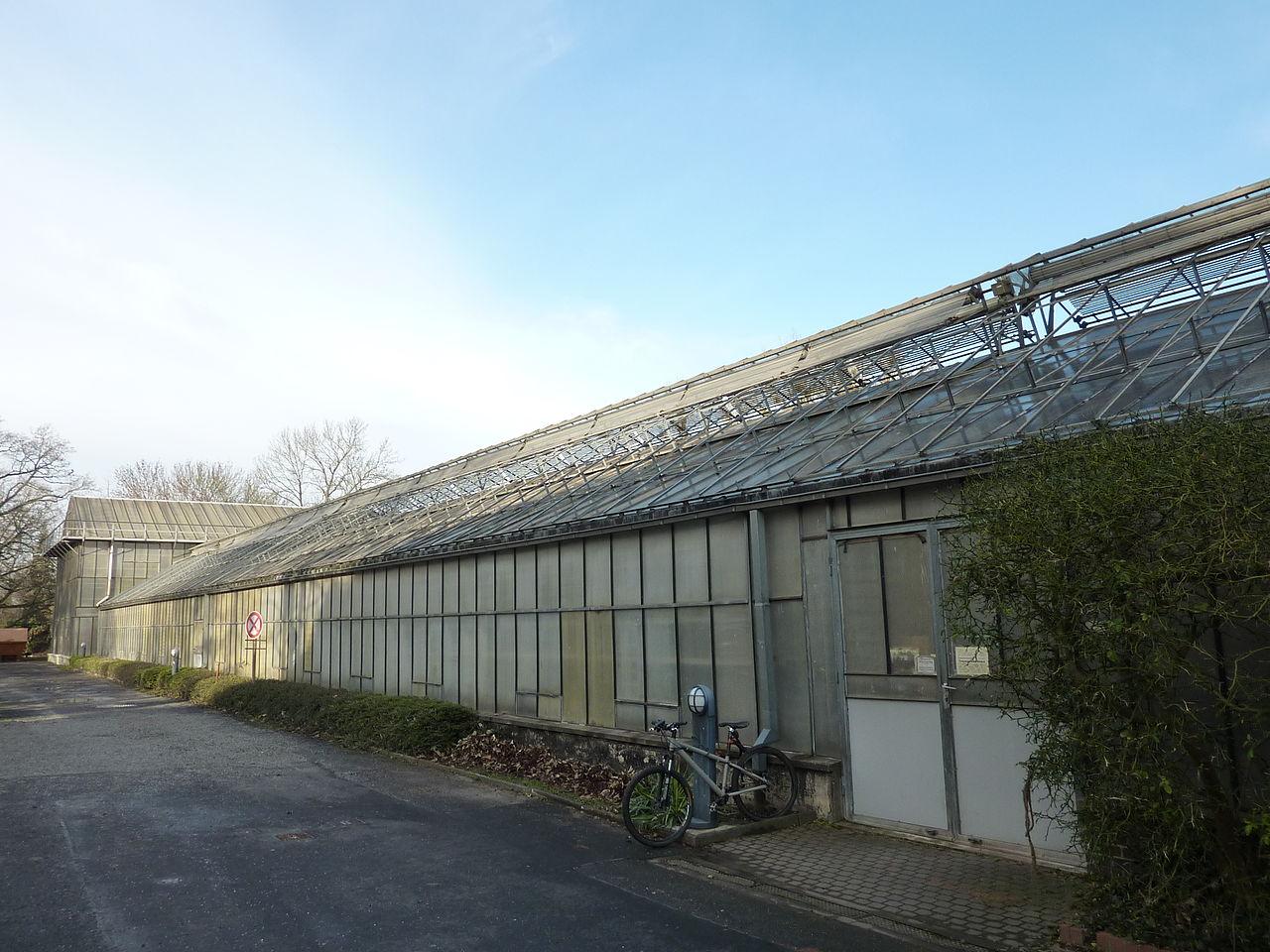 Bild Gewächshaus für tropische Nutzpflanzen Kassel