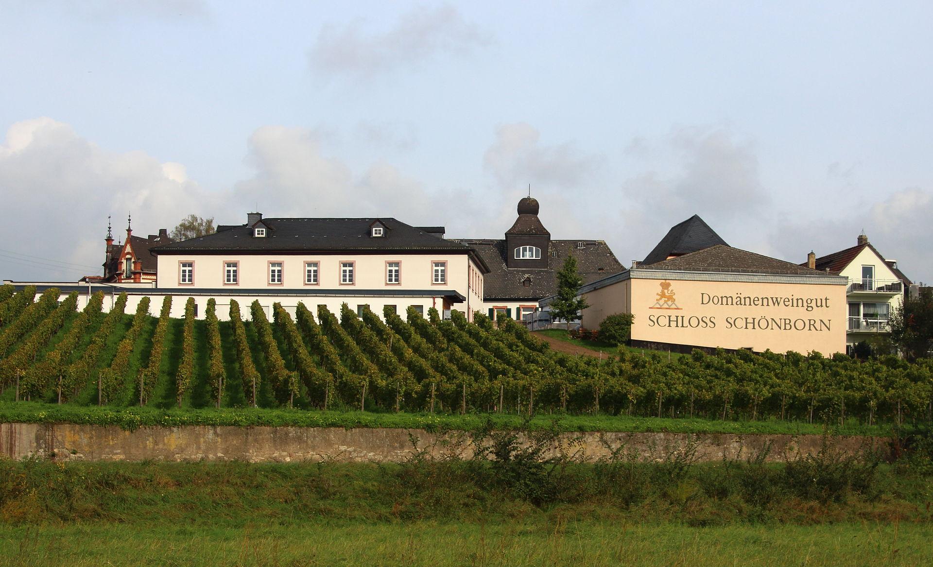 Bild Schloss Schönborn Hattenheim