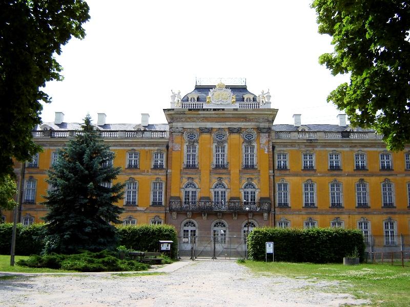 Bild Schloss Dornburg an der Elbe