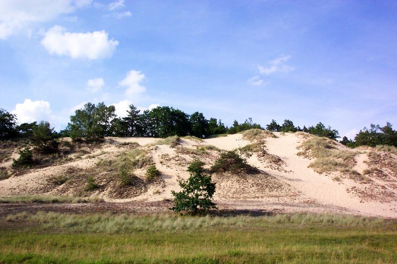 Bild Naturpark Mecklenburgisches Elbetal