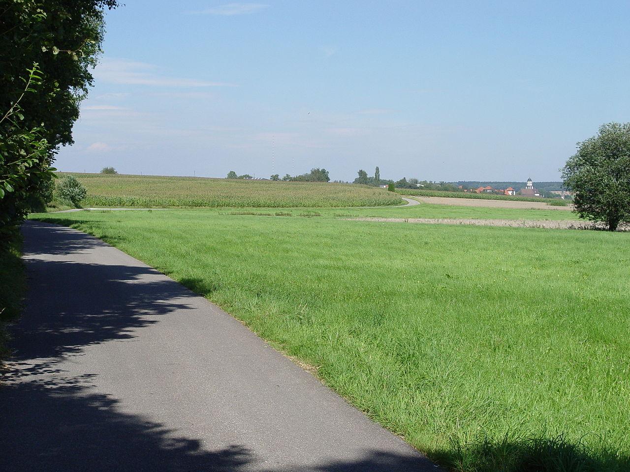 Bild Heideggers Feldweg Meßkirch