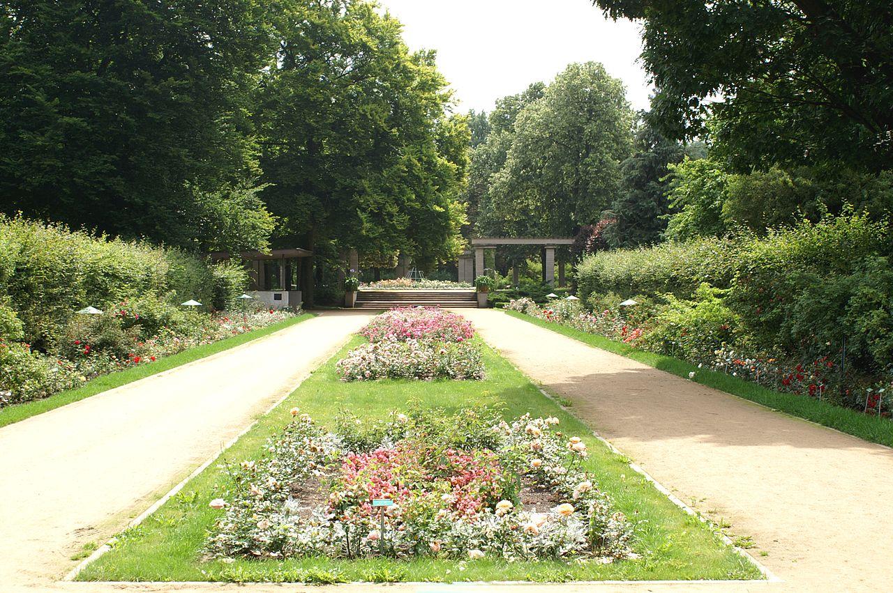 Bild Ostdeutscher Rosengarten Forst