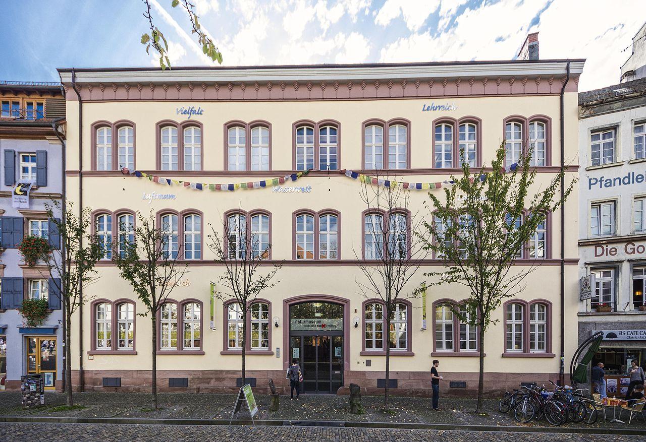 Bild Naturmuseum Freiburg