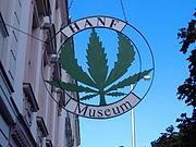 Bild Hanf Museum Berlin
