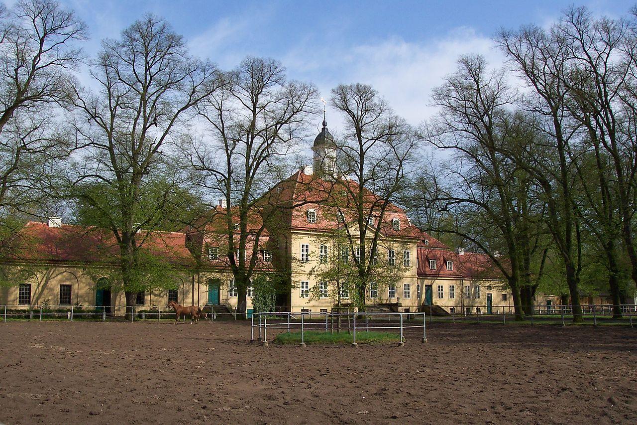 Bild Brandenburgisches Haupt und Landgestüt Neustadt Dosse