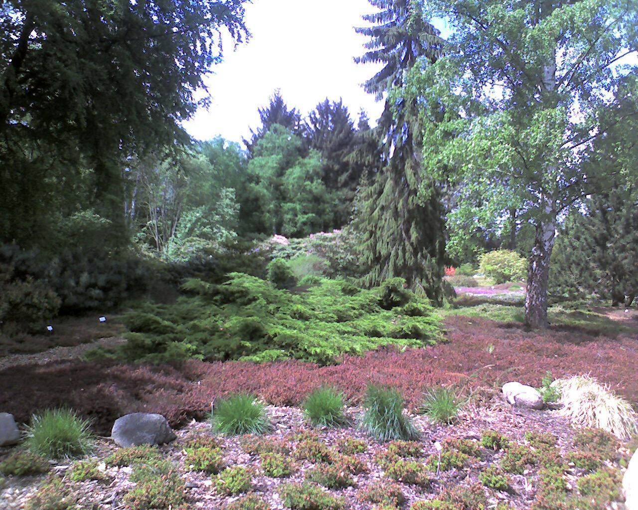 Bild Botanischer Garten Greifswald