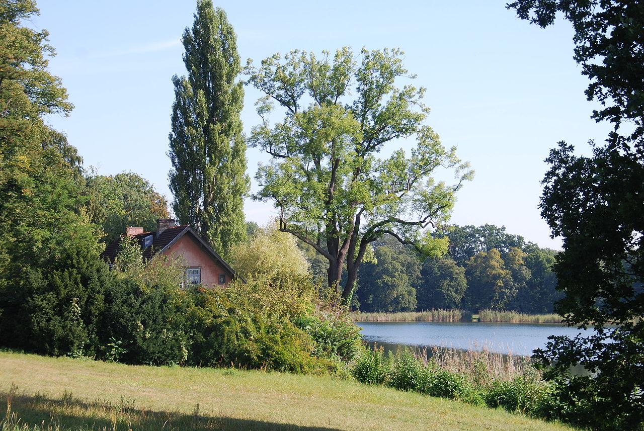 Bild Neuer Garten Potsdam
