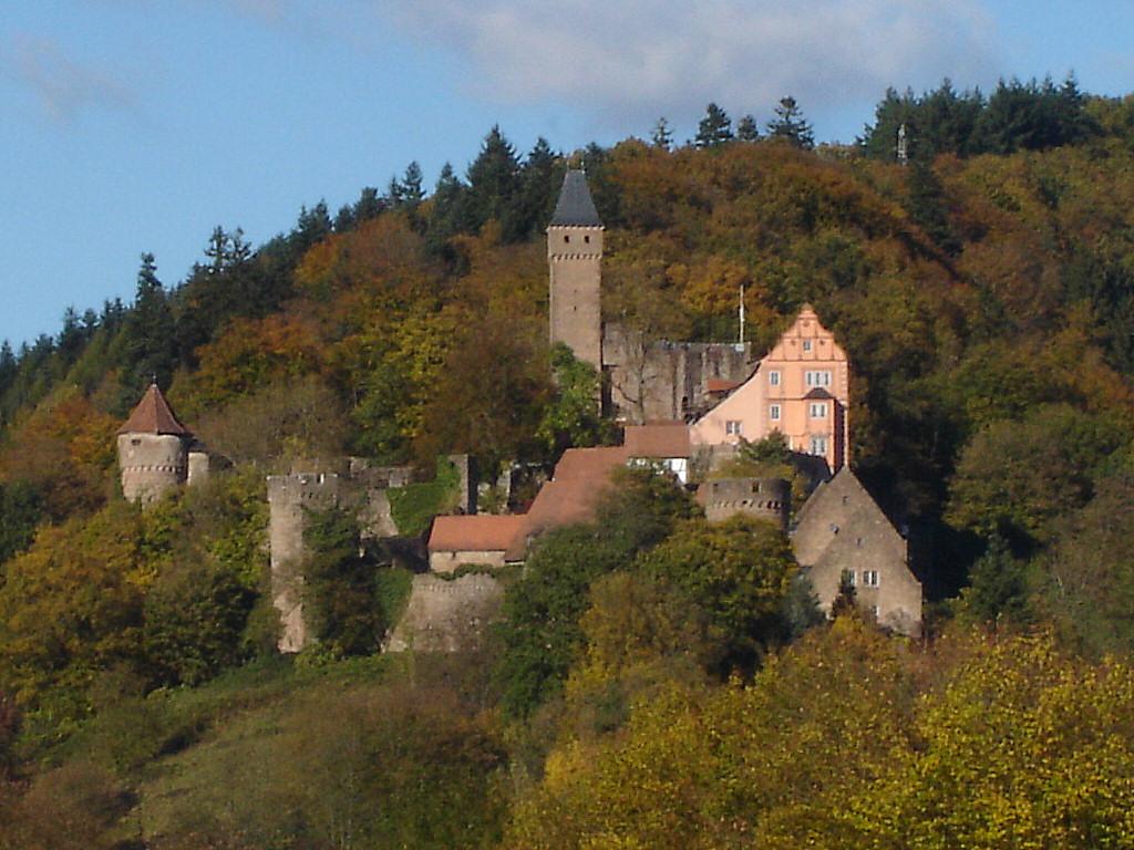 Bild Burg Hirschhorn