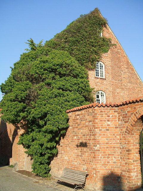 Bild Kloster St. Johannis Stralsund