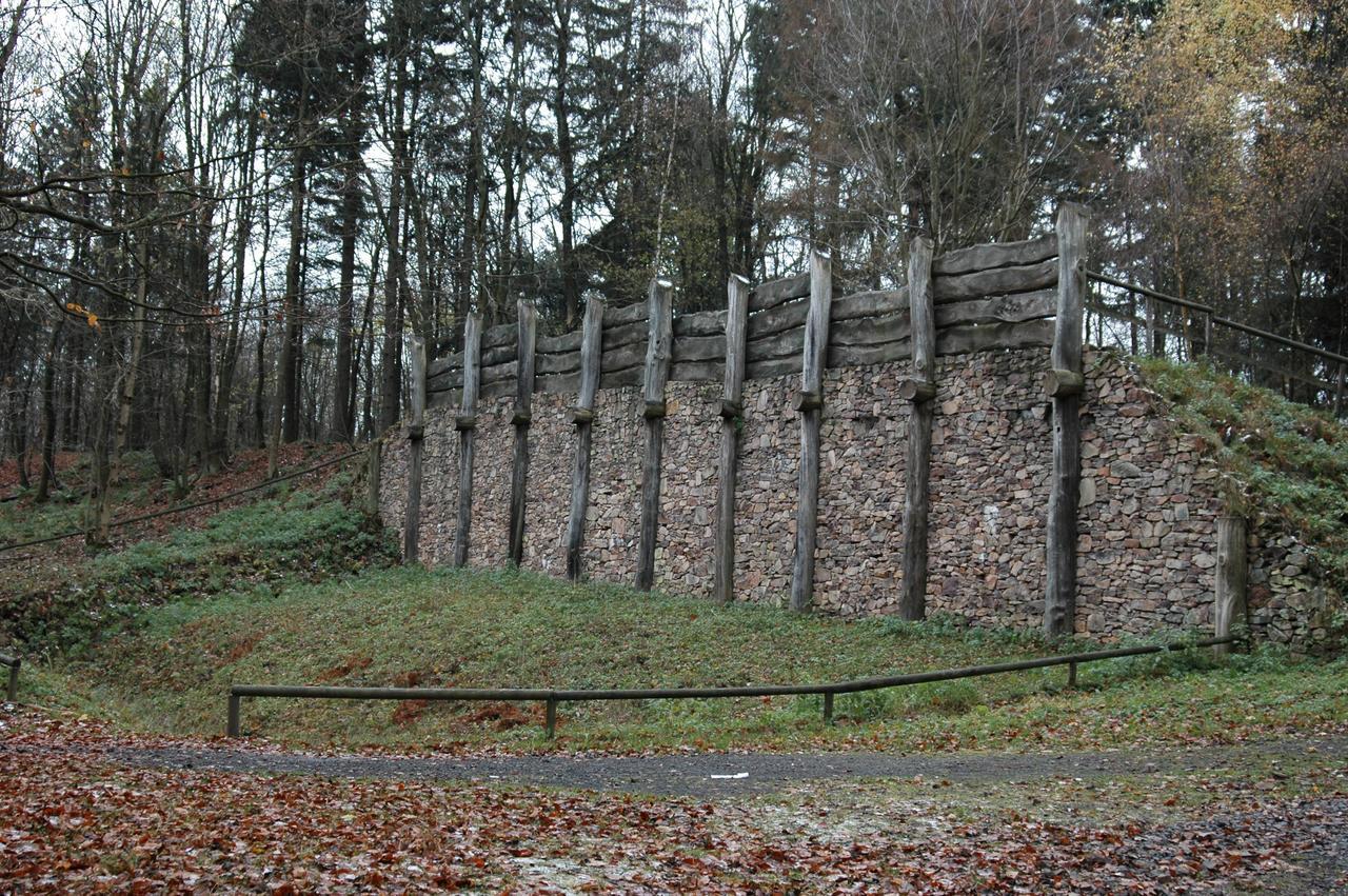 Bild Keltenwall auf dem Donnersberg
