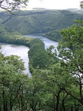 Bild Nationalpark Eifel Simmerath