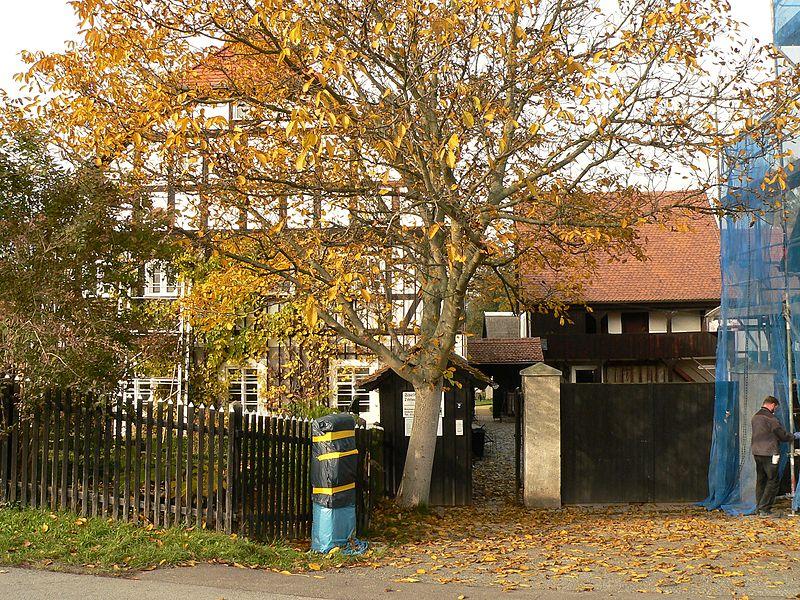 Bild Dorfmuseum Markersdorf