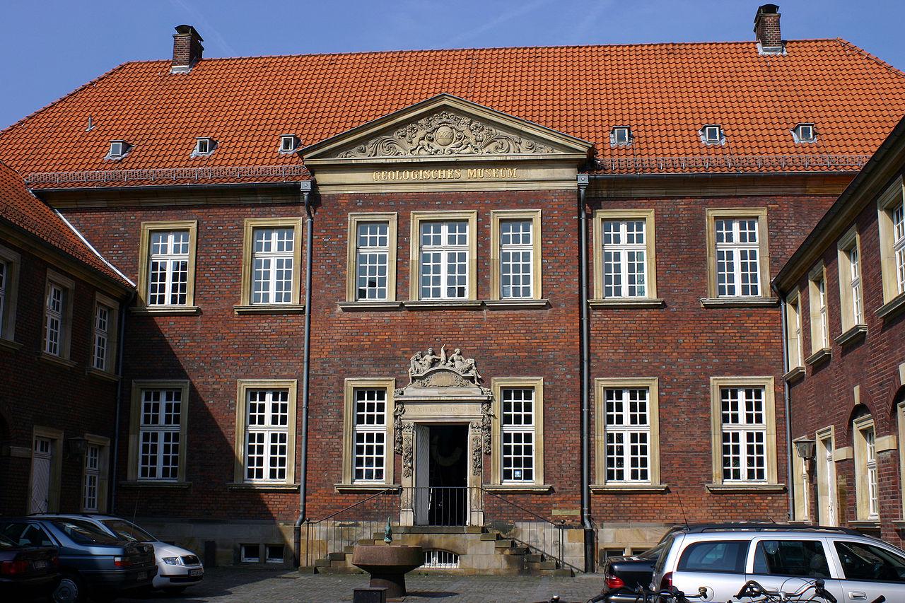 Bild Geomuseum Münster