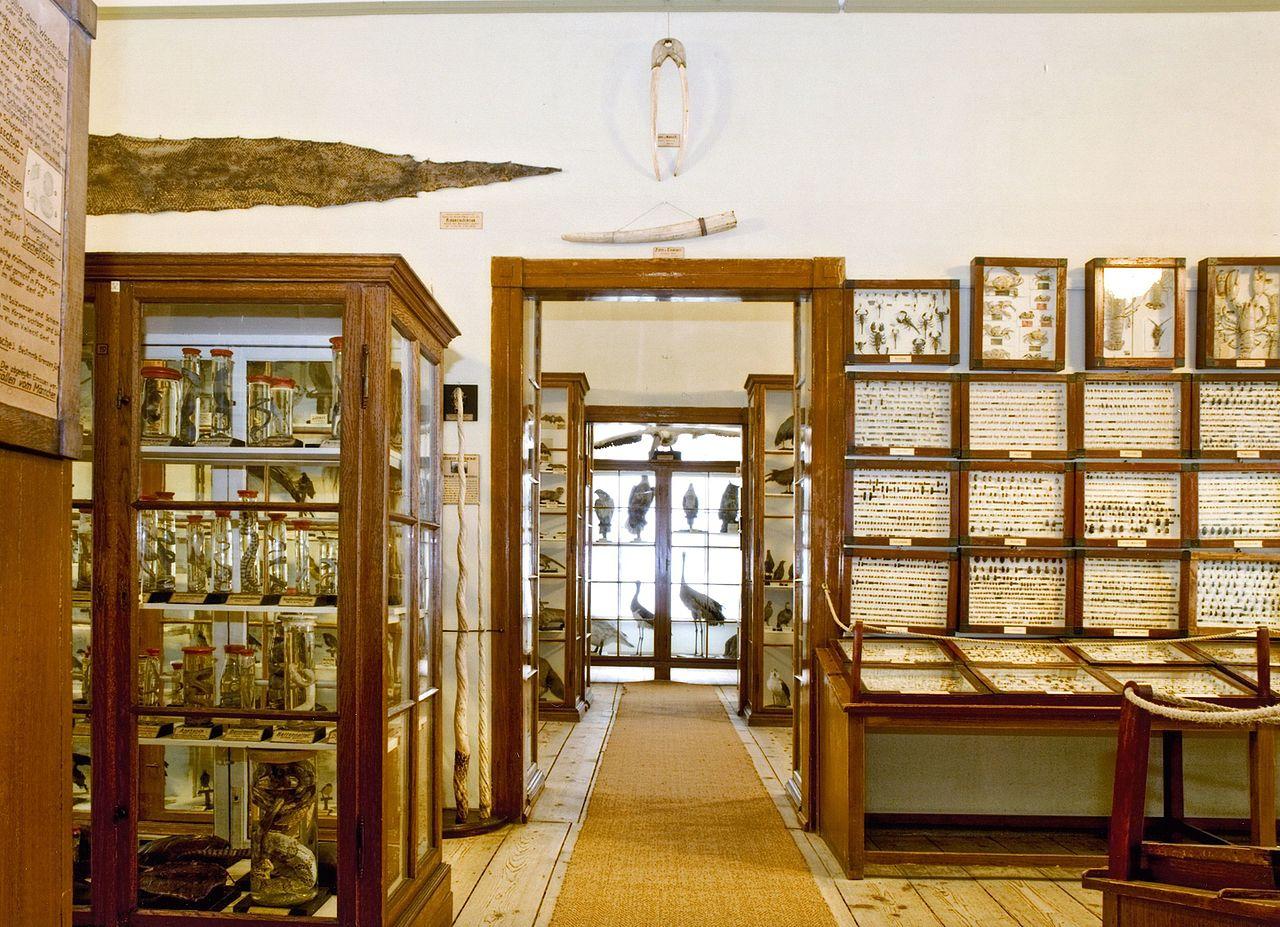 Bild Museum Waldenburg