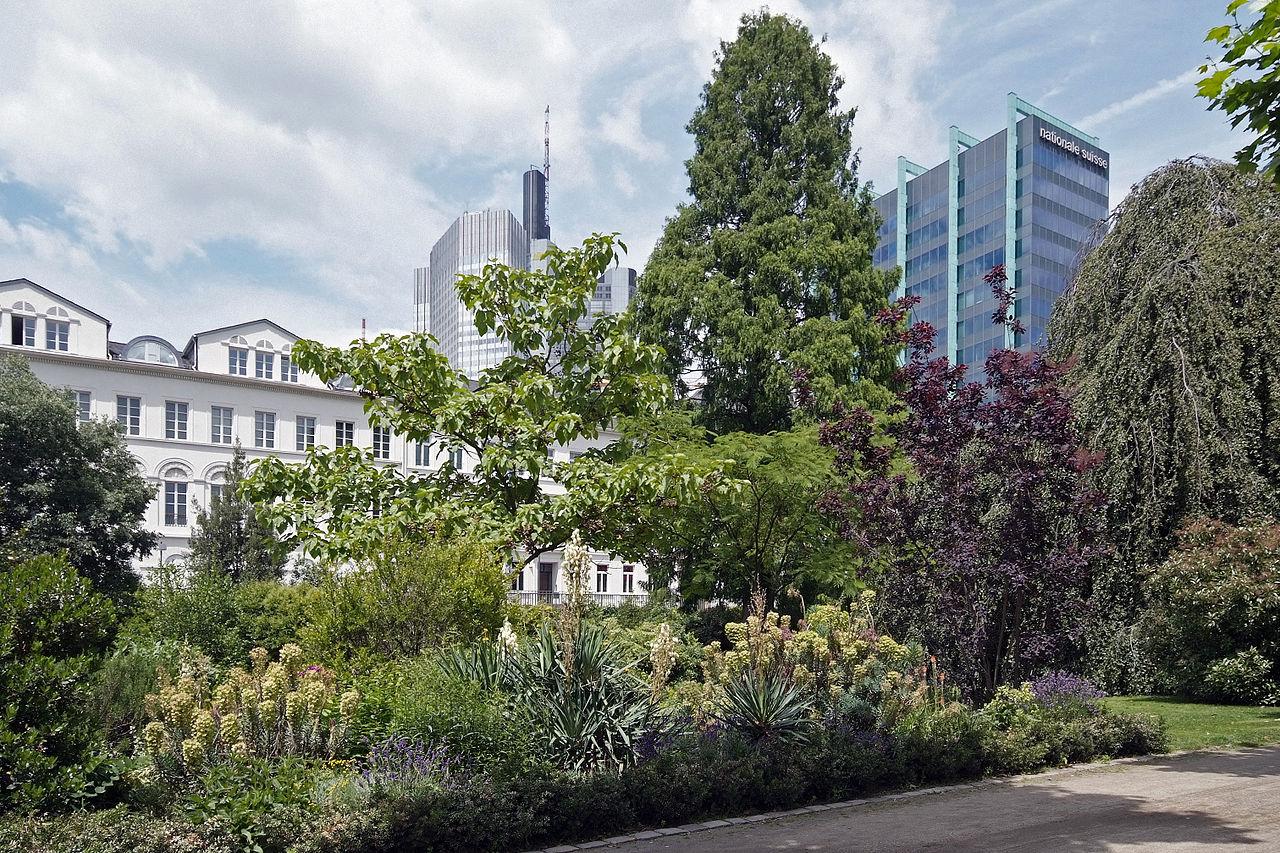 Bild Nizza Frankfurt am Main