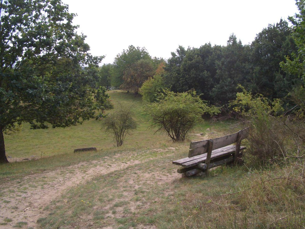 Bild Naturpark Feldberger Seenlandschaft