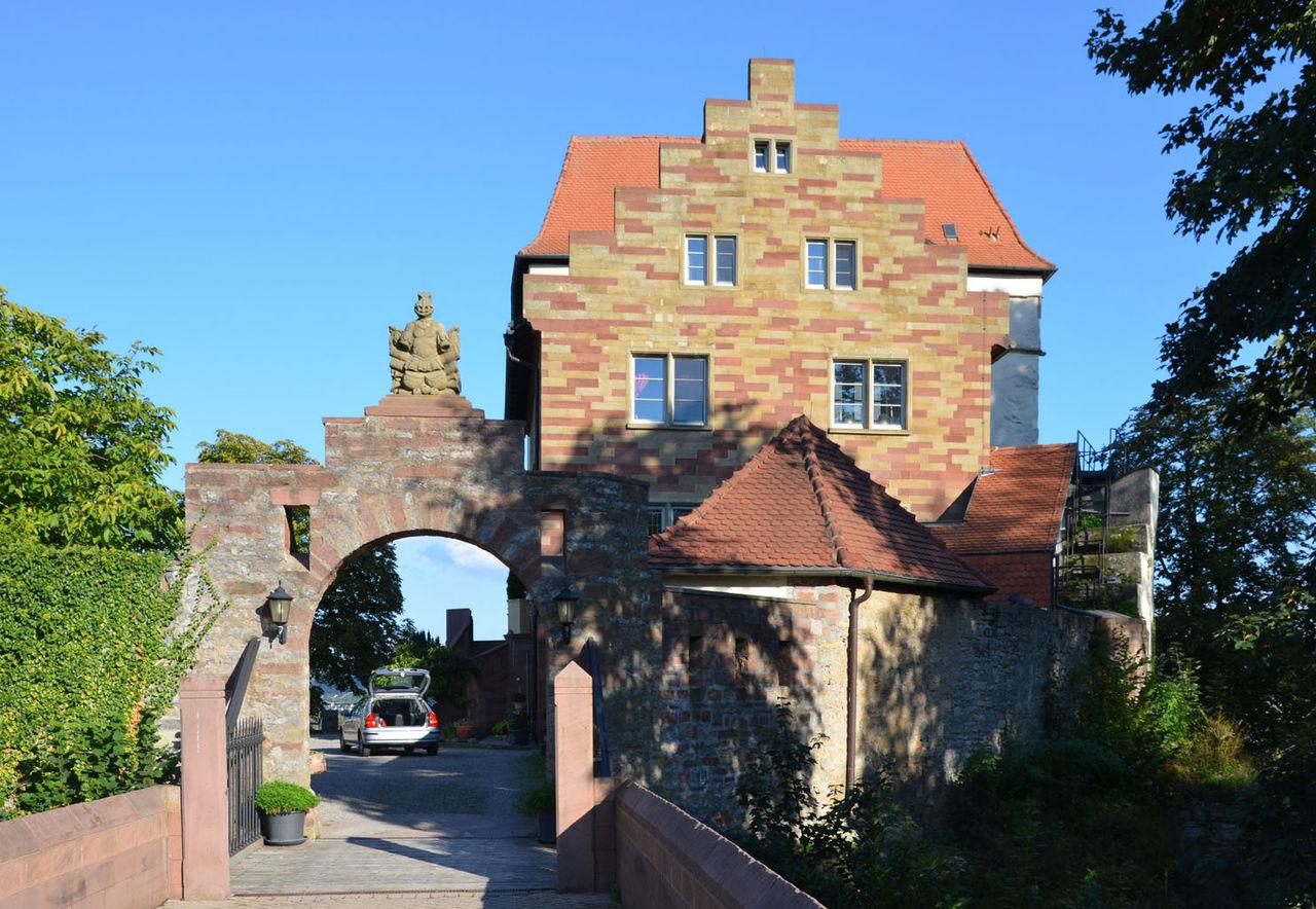 Bild Schloss Neuburg Obrigheim