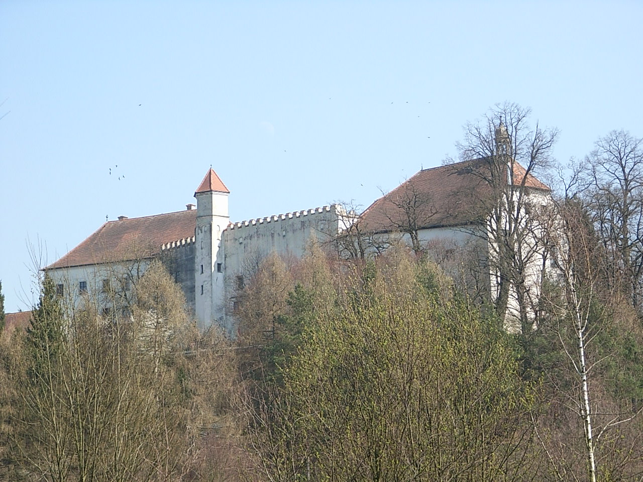 Bild Schloss Ortenburg Fürstenzell