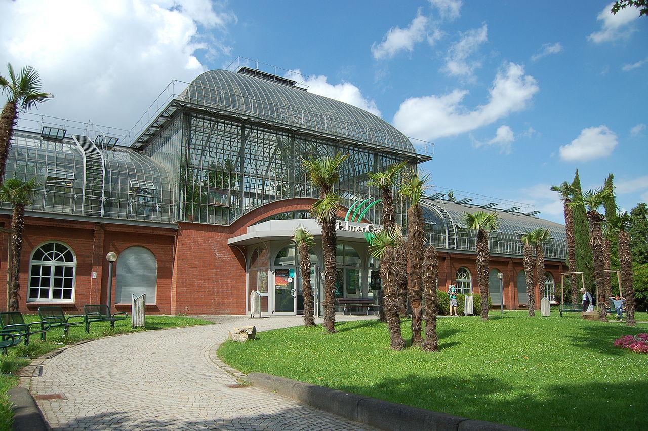 Bild Palmengarten Frankfurt am Main