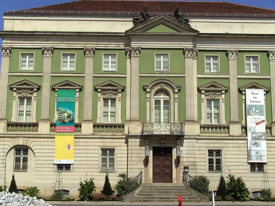 Bild Naturkundemuseum Potsdam