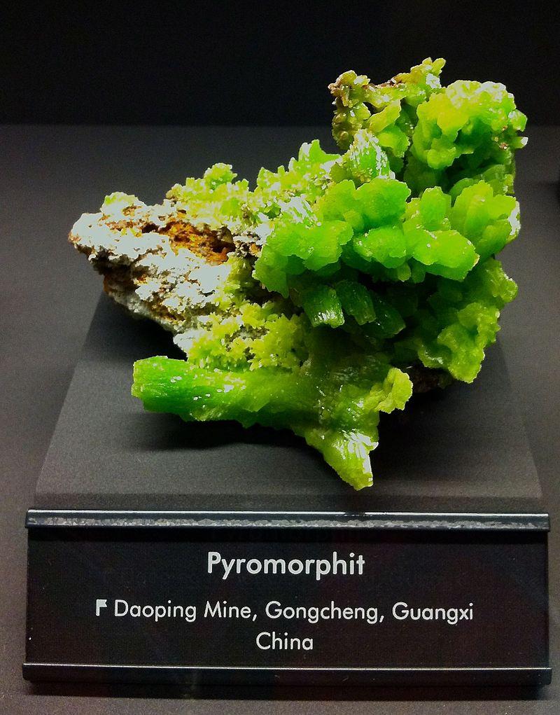 Bild Mineralogische Sammlung Freiberg