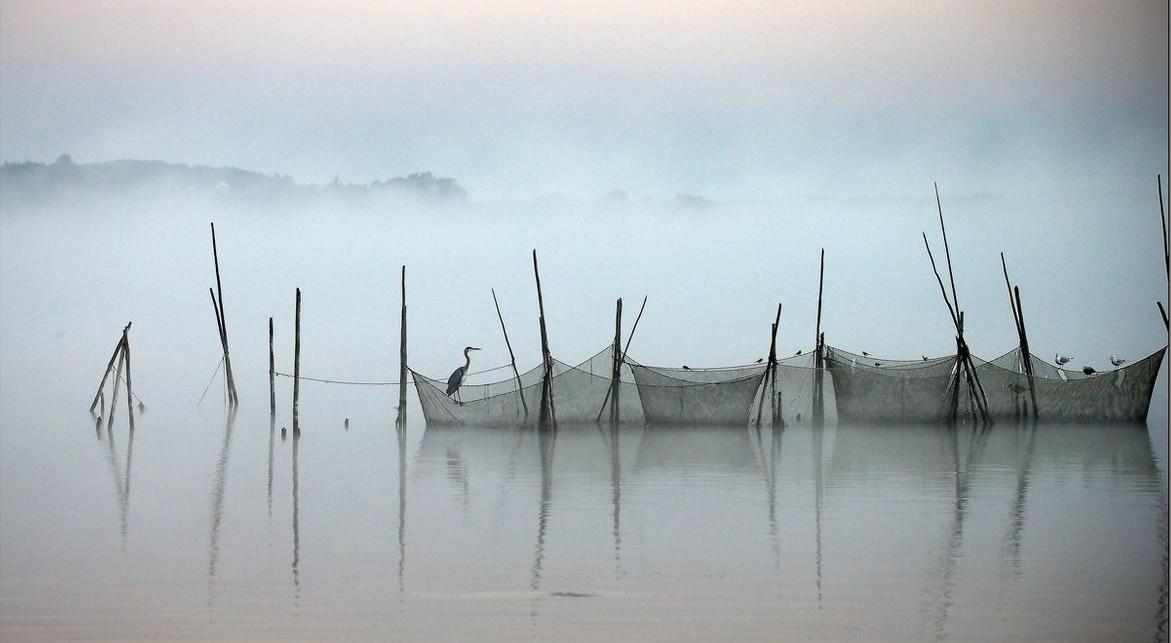 Bild Fischereiausstellung Plaue Havel
