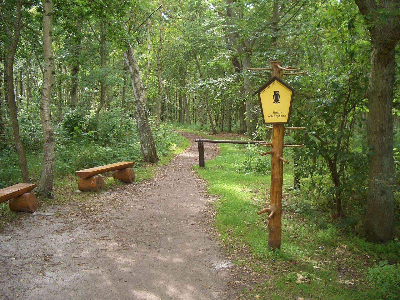 Bild Infozentrum Wald und Moor Neuheide