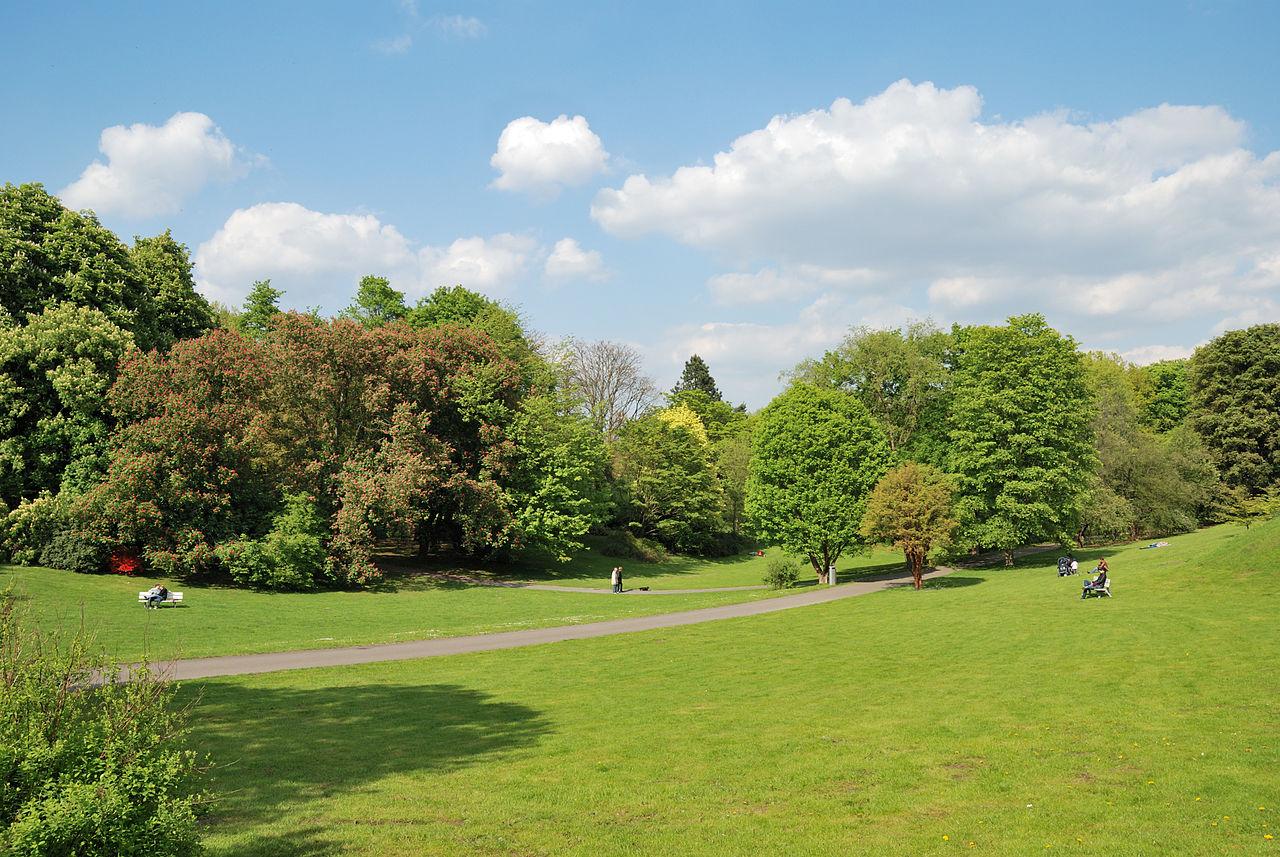 Bild Botanischer Garten Rombergpark Dortmund