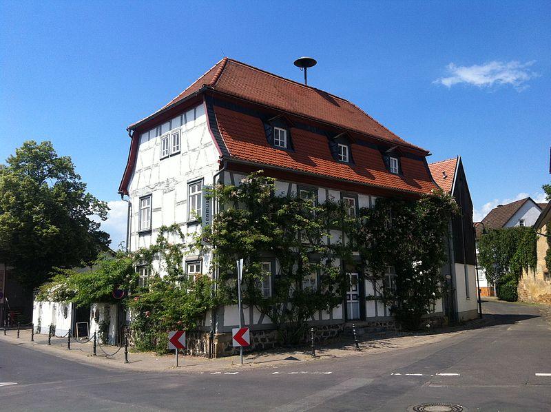 Bild Rosenmuseum Bad Nauheim Steinfurth