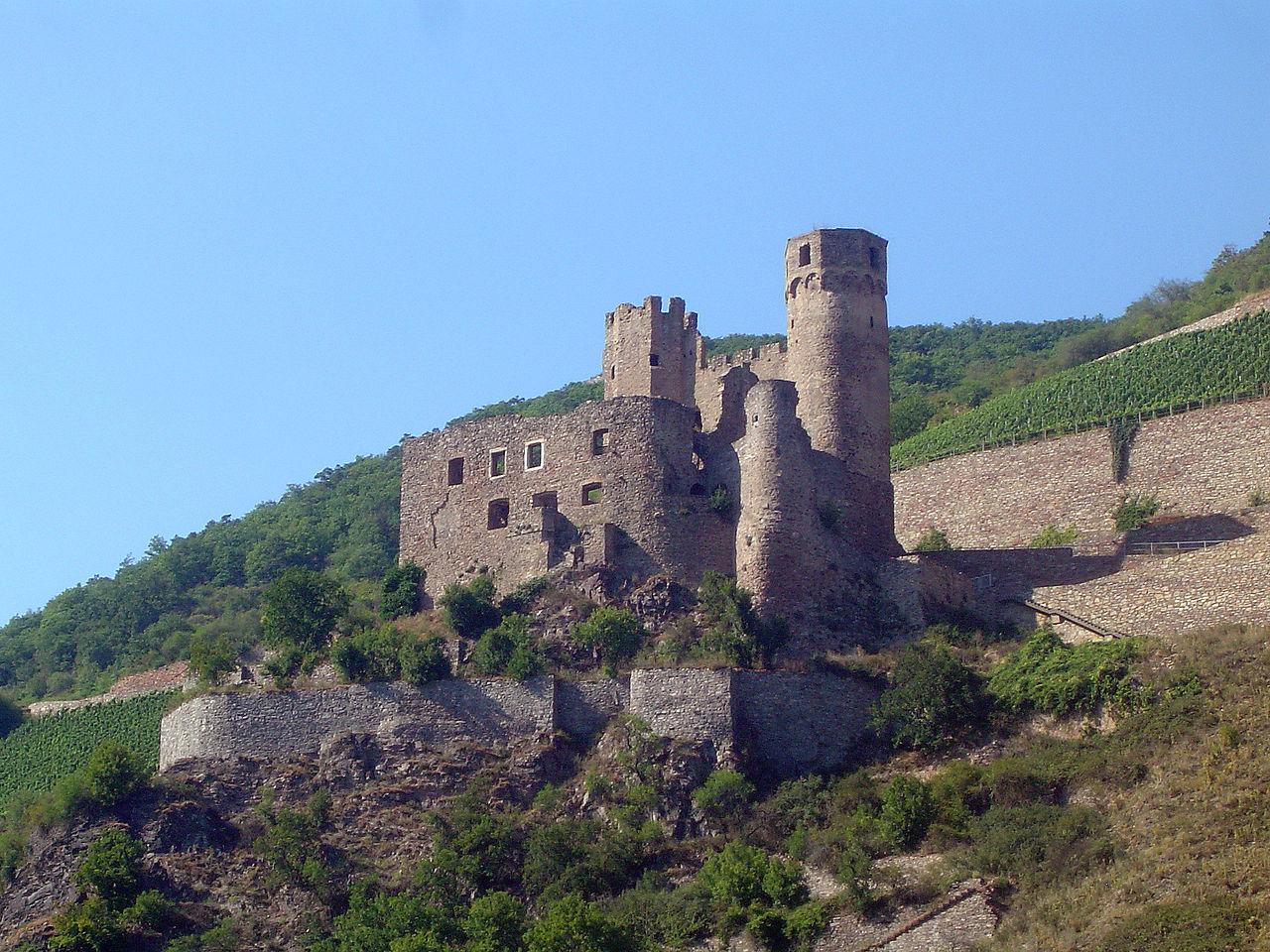 Bild Burg Ehrenfels Rüdesheim