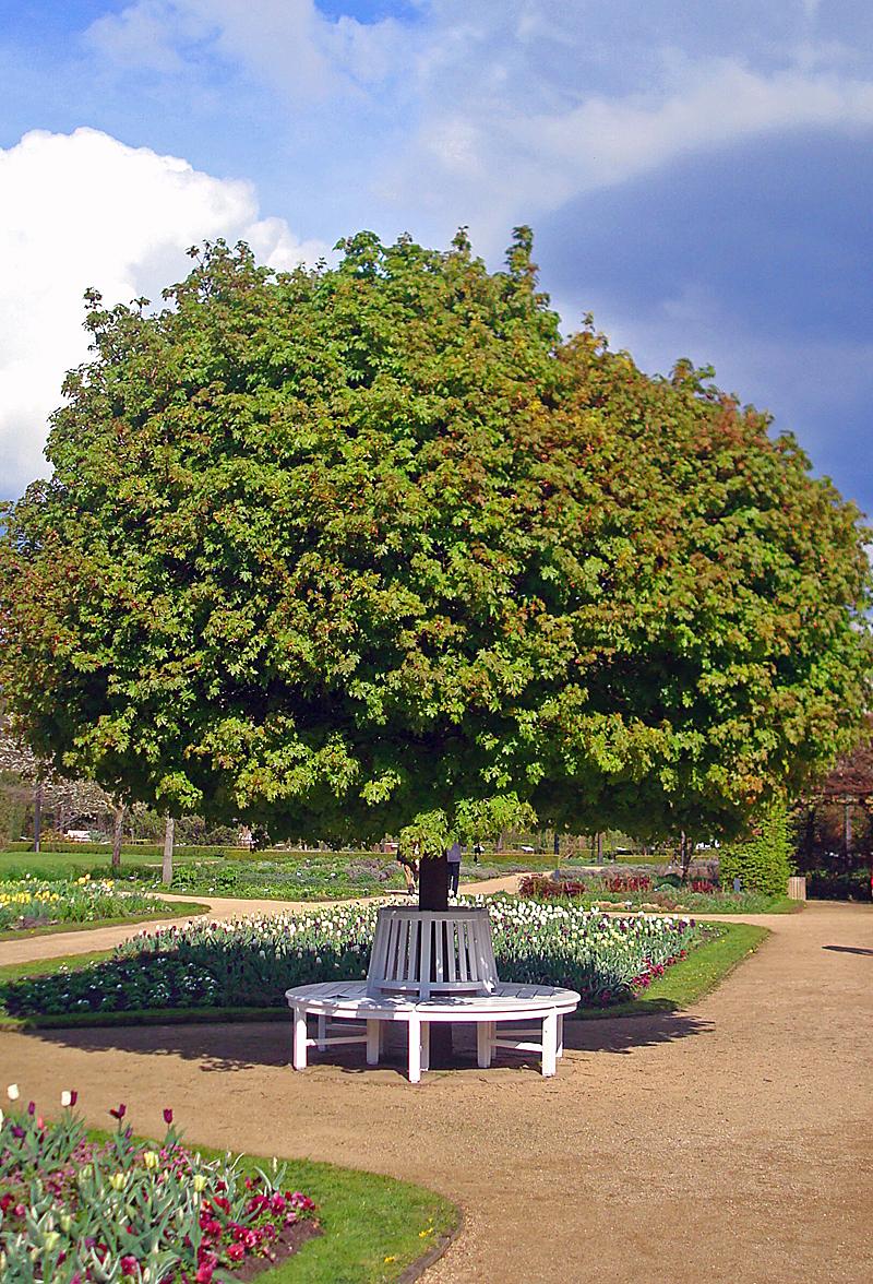 Bild Botanischer Garten Gütersloh