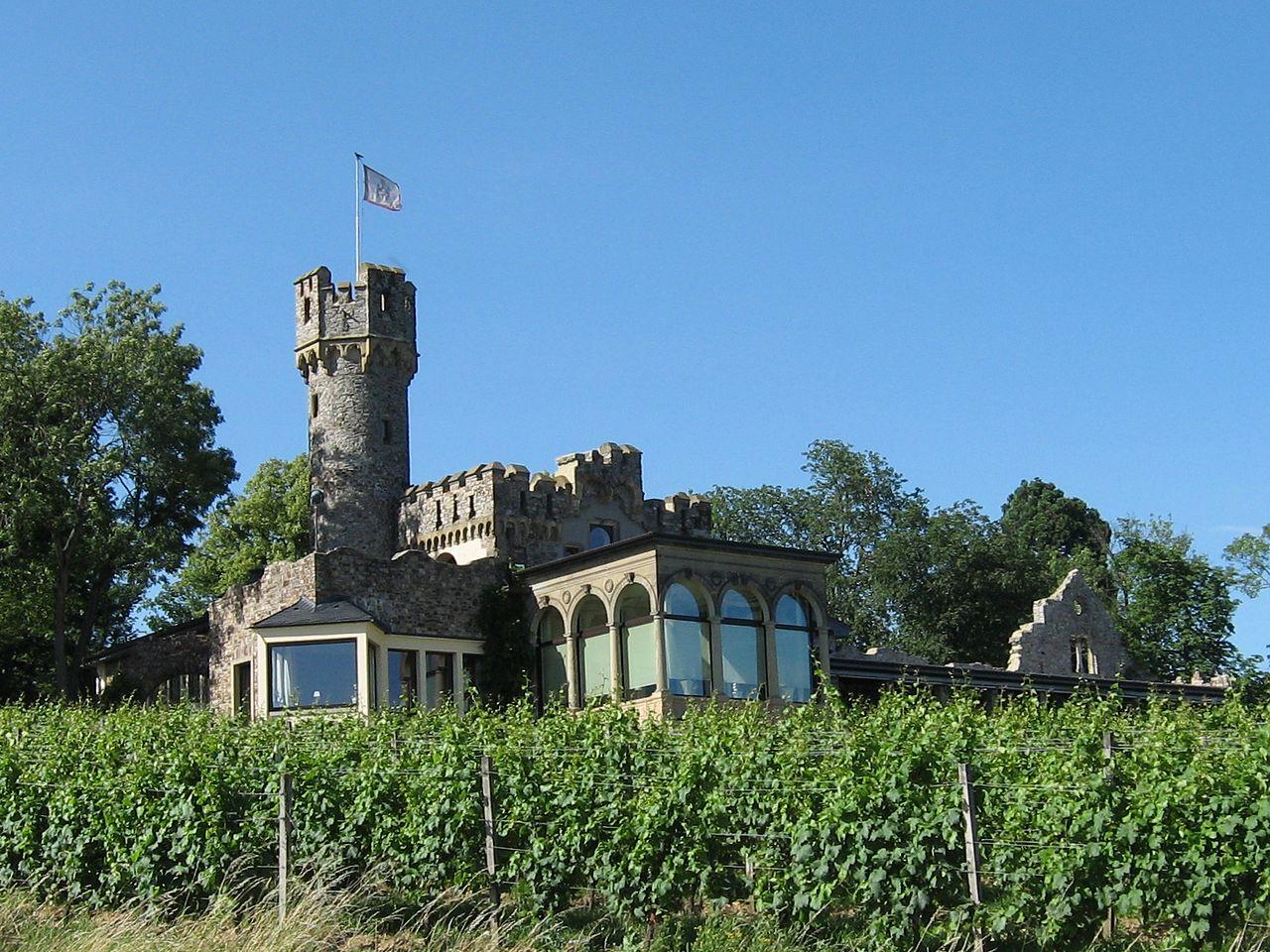 Bild Burg Schwarzenstein Geisenheim