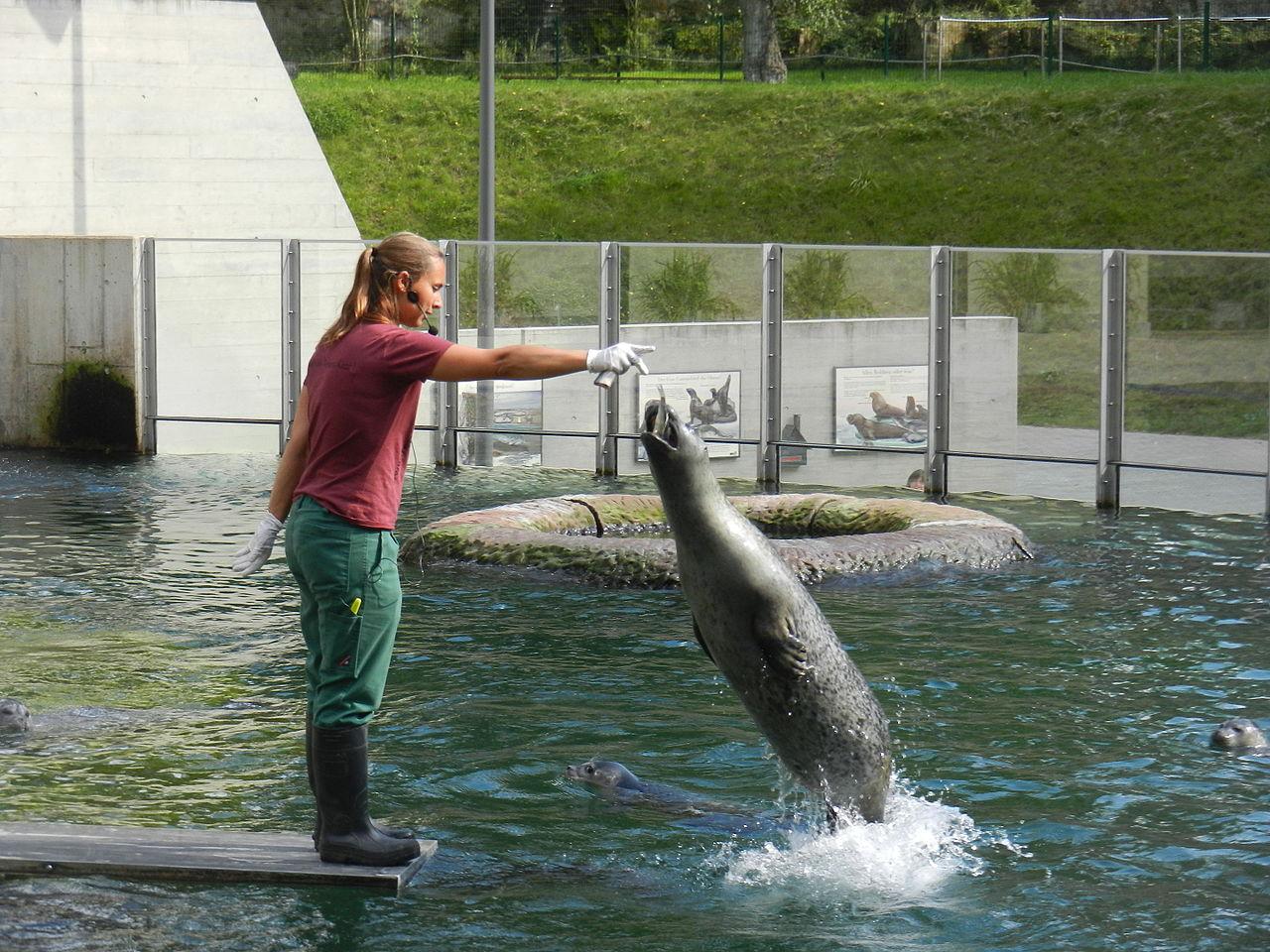 Bild Saarbrücker Zoo