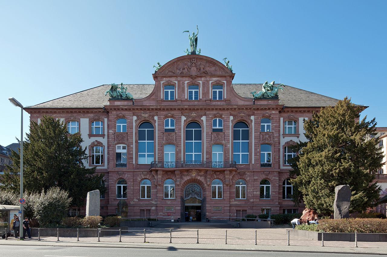 Bild Senckenberg Naturmuseum Frankfurt am Main
