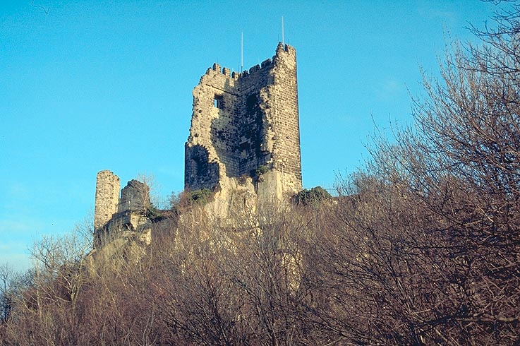 Bild Burgruine Drachenfels Königswinter