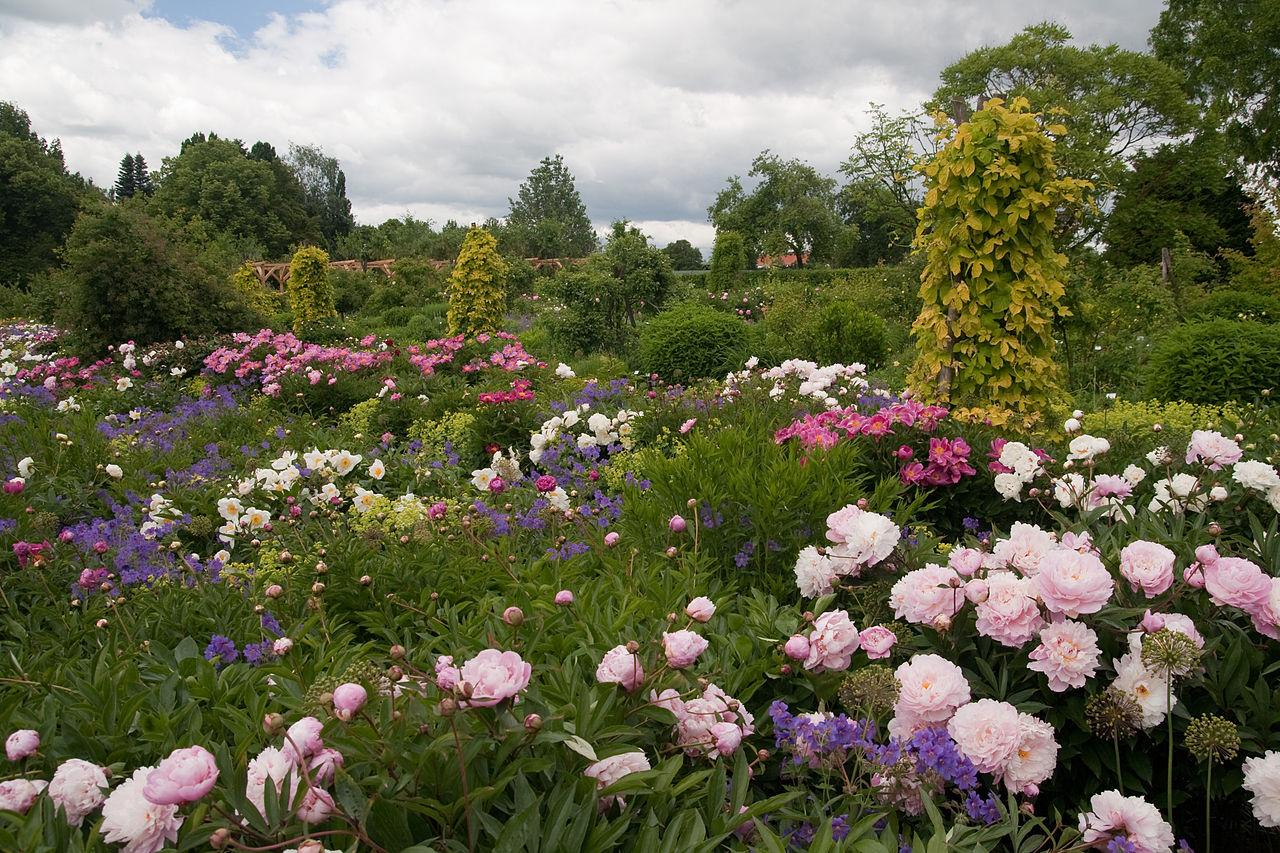 Bild Weihenstephaner Gärten Freising