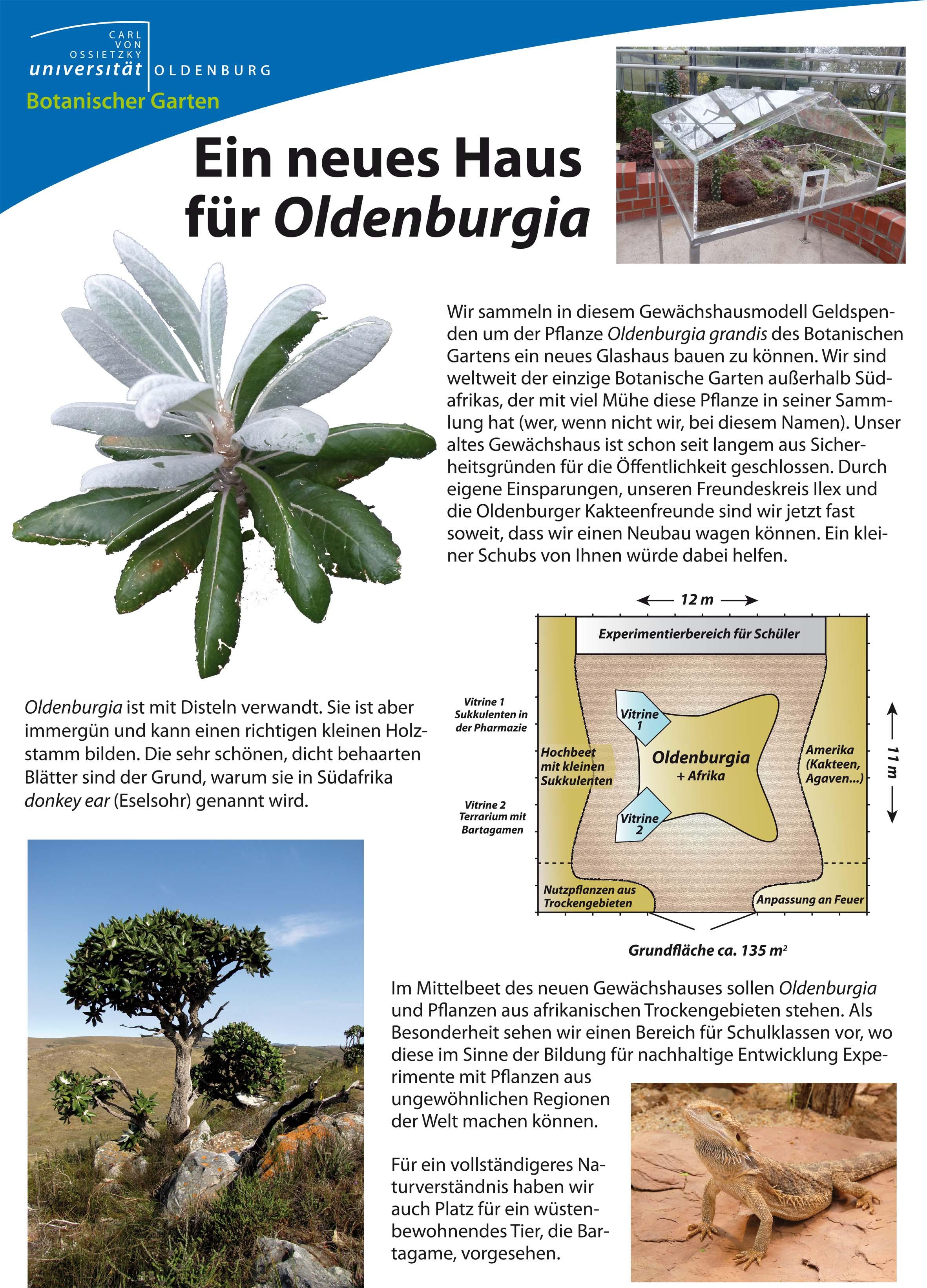 Bild Botanischer Garten der Universität Oldenburg
