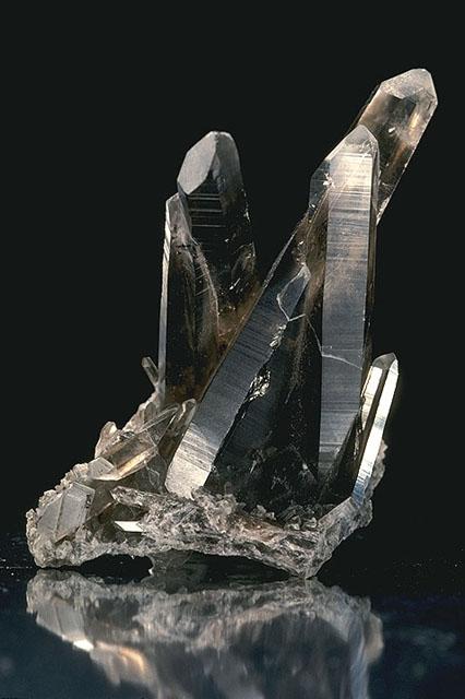 Bild Mineralienausstellung Freiburg
