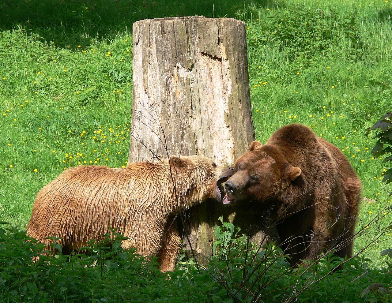 Zoo Bielefeld