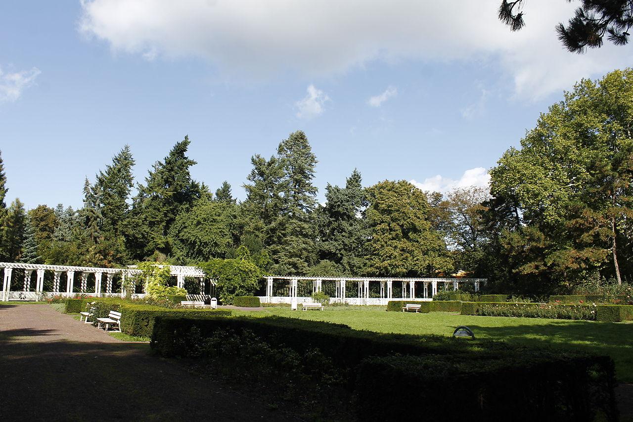 Bild Vogelgsang Park Magdeburg