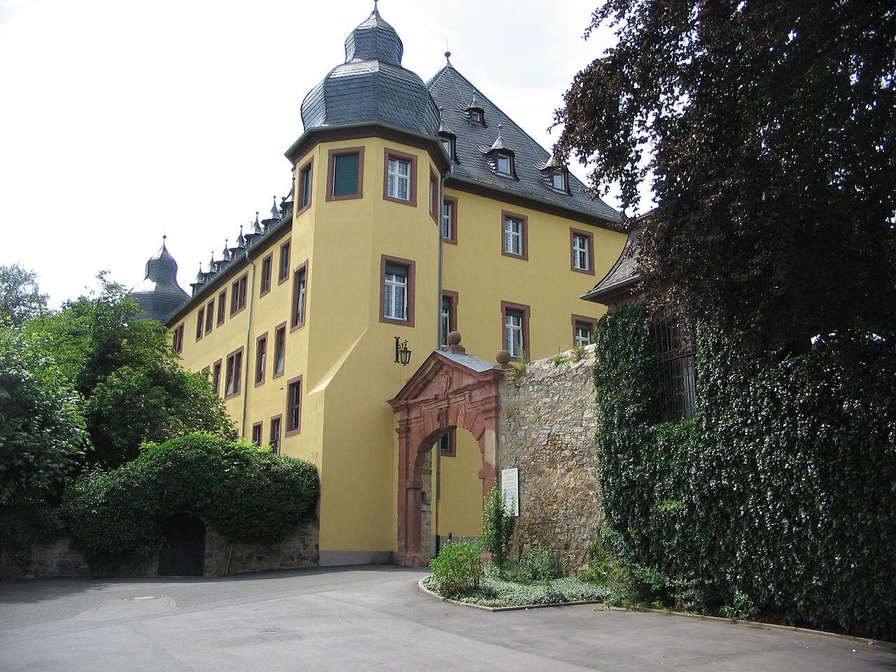 Bild Schloss Vollrads Oestrich Winkel